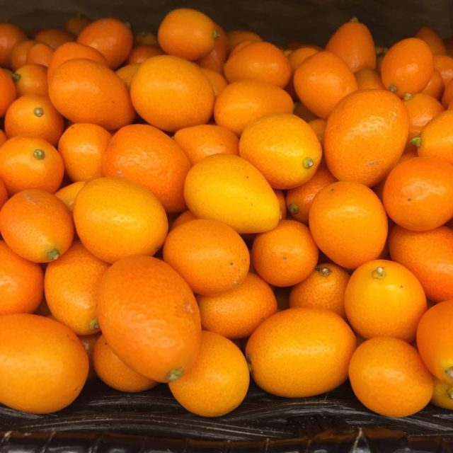 Kumquats are high in Vitamin C! Perfect for this timehellip